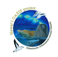 Hawai'i OASIS project: Odontocete ASsessment around ISlands (artwork by Annie Douglas)